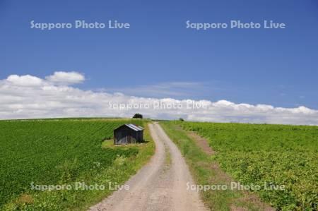 農道イメージ